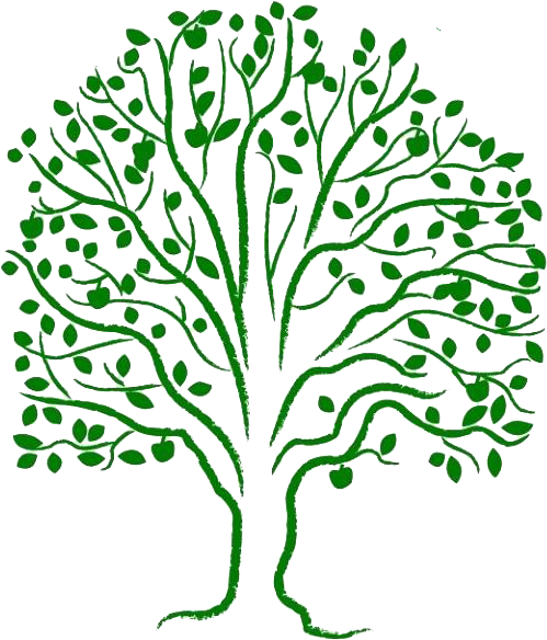 the tree of life world federation of methodist and uniting church